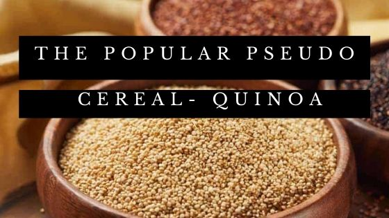 The popular pseudo cereal- Quinoa